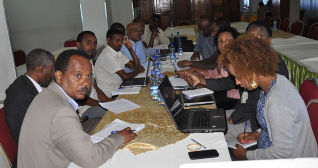 A workshop on risk assessment of yellow fever in Ethiopia was held
